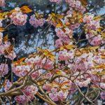 Gemälde von Julia Belot: Kirschblüte, Öl auf Leinwand, 80 cm x 260 cm, 2019