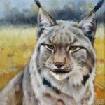 Gemälde, Tierportrait von Julia Belot: Luchs (1), Öl auf Leinwand, 35 cm x 35 cm, 2020